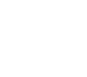 logo Volvo 300 Club wit